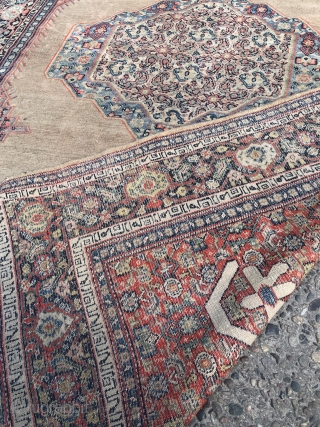 Fine antique Persian Senneh rug, beautiful camel ground color. Inscriptions inside the minor border, size: 200x130cm / 6'6''ft x 4'3''ft
