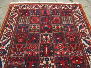 Just out of a North-German estate: Antique Persian Bakhtiary rug, circa 1920. Size: ca 305x220cm / 10'1'' x 7'2''