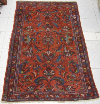 Antique Persian Lilian rug with beautiful drawing. Age: circa 1900. Size: ca 195x130cm / 6'4'' x 4'3''