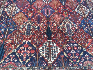 Large antique Persian Bakhtiary carpet with garden design from the 1920´s, very decorative. Size: ca. 505x350cm / 16'6'' x 11'5'' ft www.najib.de