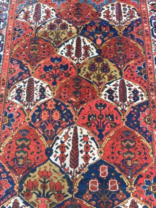 Antique Persian Bakhtiary rug from the 1920´s with a classical garden design, size: ca. 205x155cm / 6'7''ft x 5'1''ft