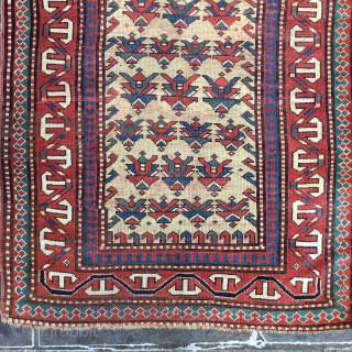 "Super Rare Kazak Prayer Borchalou Rug Caucasian 3'4"" x 5'9"" 1903 collectible