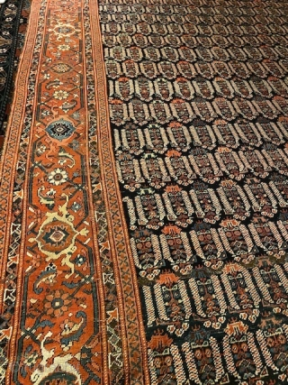 North West Persia/ Karabagh ca 1900 kelleh size carpet in good condition. Some wear on a few spots. Ca 524 x 222 cm.