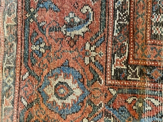 North West Persia/ Karabagh ca 1900 kelleh size carpet in good condition. Some wear on a few spots. Ca 524 x 222 cm.  A video can be provided at request.