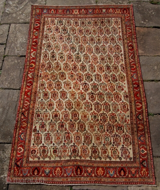 Superb Shishboluki Qashqai rug. 19th century. 234 x 143cm. Elegant drawing and fine quality. Good condition with even low pile and some small repairs. A very classy rug.