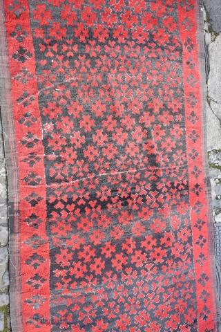 djebel amour carpet, west algerian saharian atlas mid 20th century.   myriad of stars in the dark sky... approximately 300x 170cm