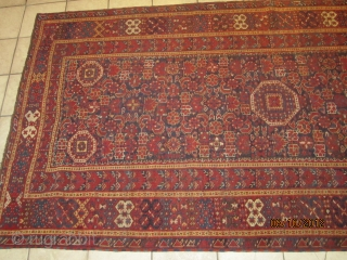 19 th very fine old BESHIR carpet %100 pure wool