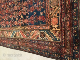 Antique Shirvan Oriental Rug  #7852