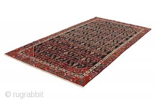 Borchalou - Antique Persian Carpet  More info : info@carpetu2.com