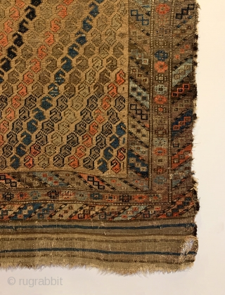 """Antique Baluch Rug. Last quarter 19th Century. Alternating Botehs on Camel field. Strong colors throughout including light steel blue, turquoise, apricot and purple. Original condition with no repairs. 12 colors. 5'2"""" x  ..."""
