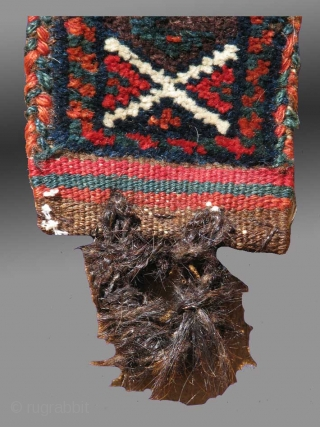 Baluch Pile Animal Band/Trapping, SE Persia, 19th Century  Among the Baluch of the Sistan region of SE Persia, one finds a number of eccentric weavings, including animal trappings of various types, as well  ...