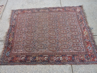 """Antique botah rug 80"""" x62""""  Probably from the Khamseh group.  Reasonably presentable thin/low-pile with a couple of small holes and wear spots--"""