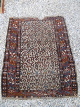 Antique Shirvan rug.