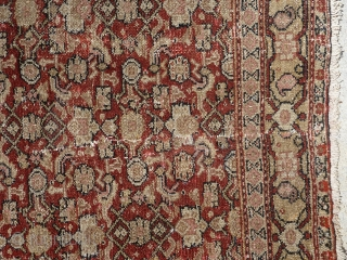 Antique 19th century Senneh / Senna Persian rug. Beautiful soft colors including a pistachio green and pale yellow, which are typical from this time period. Border has a muted yellow background with  ...