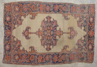 Antique Fereghan / Farahan / Ferahan rug.  Late 19th century to early 20th century. Beautiful design with interesting small secondary borders. Most colors are probably natural though one end has a  ...