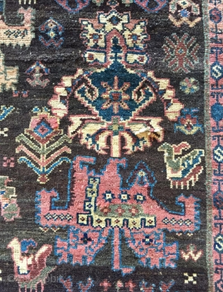 Very Unusual design Fragmand Bidjar Size 180x115cm