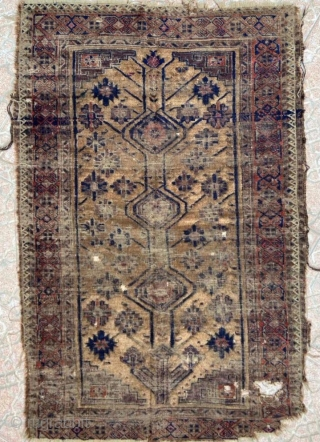 The tree of life Beluch carpet size 160x110cm