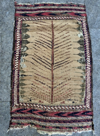 Beluch tree of Life sofra size 4,9x3 ft