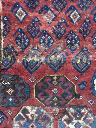 Kurdish fragmand carpet