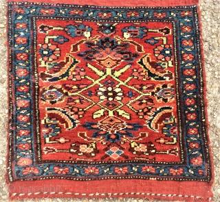 antique Bidjar Mafrash side. Size: approx. 50 x 50 cm. Great colors and perfect wool.