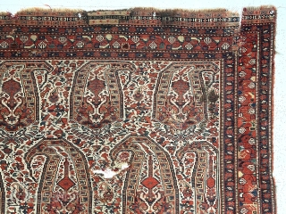 Antique south Persian ivory ground rug with large boteh, probably qashqai, in need of minor restoration. Overall even low pile with scattered small holes, likely old moth. I see a few small  ...